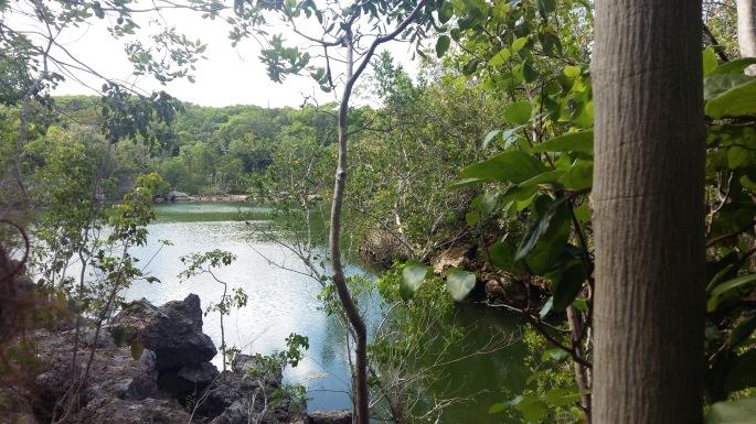 Key Largo Hammocks State park